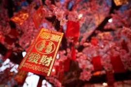阿联酋:喜气洋洋迎新春