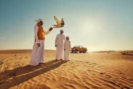 Абу-Даби делает оптимистичные прогнозы на завершение года