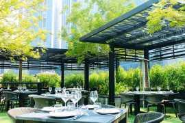 Обзор ресторанов Дубая
