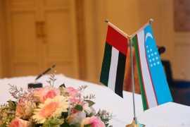 ОАЭ и Узбекистан рассматривают вопросы укрепления экономических связей